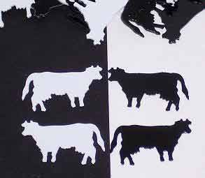 Black and White Cow Confetti